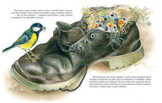 Что творится в обувнице? Н. Форостян. Ил. О. Базелян
