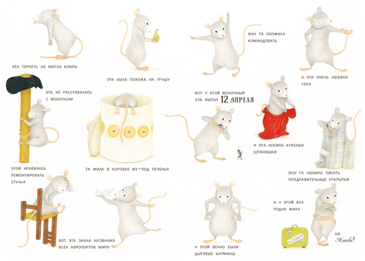 Полосатый кот и Таинственная мышь. Дж. Зоболи. Ил. Лиза ди Андреа
